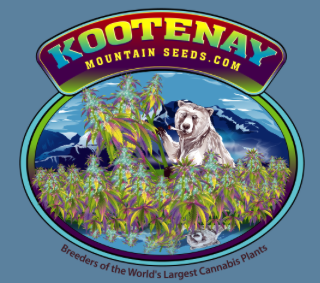 Kootenay Mountain Seeds